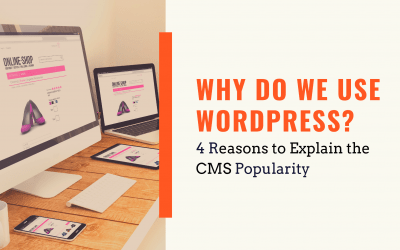 Why Do We Use WordPress? 4 Reasons to Explain the CMS Popularity